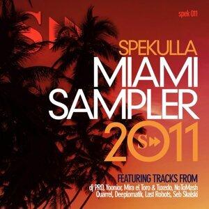 Miami Sampler 2011 アーティスト写真