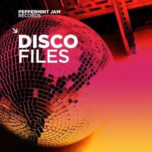 Disco Files 歌手頭像