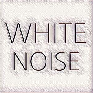 White Noise 歌手頭像