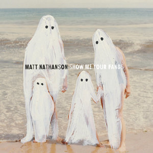 Matt Nathanson 歌手頭像