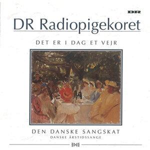 DR PigeKoret 歌手頭像