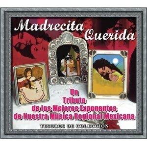 Tesoros De Colección - Madrecita Querida 歌手頭像