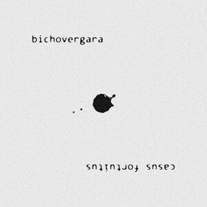 Bichovergara 歌手頭像