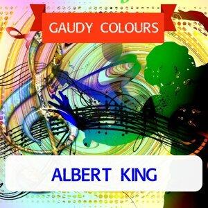 Albert King (艾伯特金) 歌手頭像