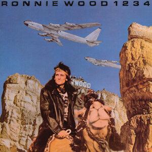 Ronnie Wood (滾石合唱團之朗伍德)