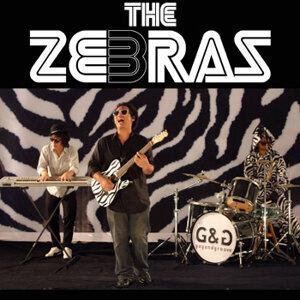 เดอะ ซีบร้าส์ (The Zebras) 歌手頭像