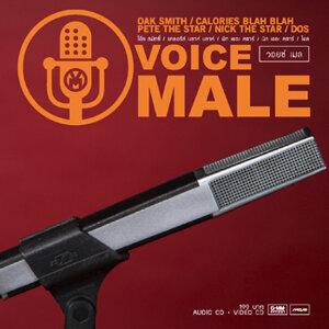 วอยช์ เมล (Voice Male)