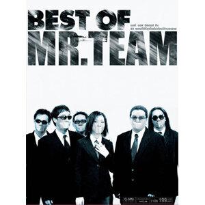 มิสเตอร์ ทีม (Mr.Team) 歌手頭像
