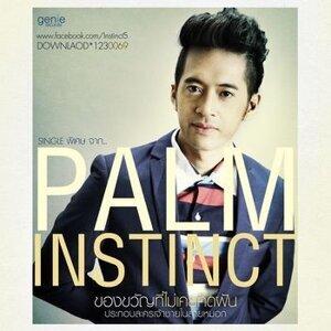 ปาล์ม อินสติงค์ (Palm Instinct) 歌手頭像