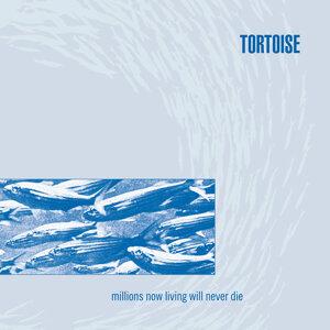 Tortoise (托特斯樂團) 歌手頭像