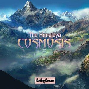Cosmosis (宇宙秩序)