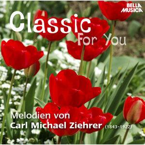 Ballhausorchester Pressburg 歌手頭像