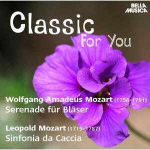Slowenisches Symphonieorchester, Slowakisches Kammerorchester 歌手頭像