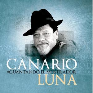 Canario Luna 歌手頭像