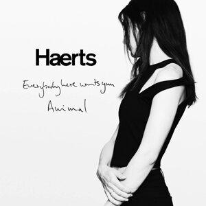 Haerts 歌手頭像
