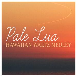 Pale Lua 歌手頭像