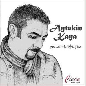 Aytekin Kaya 歌手頭像