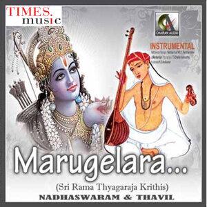 N.R.P.Ravichandran, T.V.Dhakshnamoorthy 歌手頭像