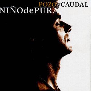Niño de Pura 歌手頭像