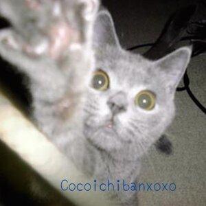 Cocoichiban