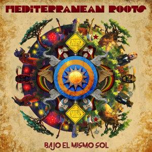 Mediterranean Roots 歌手頭像