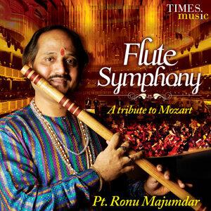 Pandit Ronu Majumdar 歌手頭像