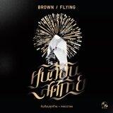 Brown Flying