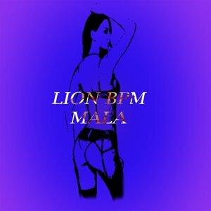 Lion BPM