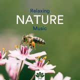 Relaxing Music Therapy & Reiki