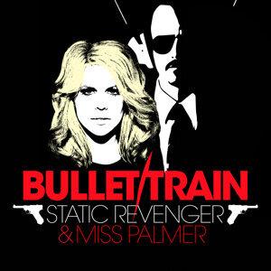 Static Revenger & Miss Palmer 歌手頭像