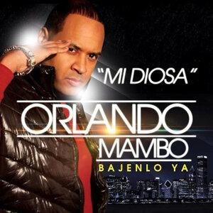 Orlando Mambo 歌手頭像
