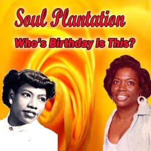 Soul Plantation