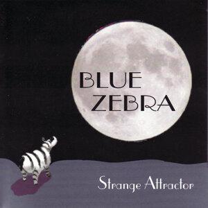 Blue Zebra 歌手頭像