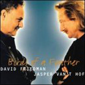 David Friedman and Jasper Van't Hof 歌手頭像