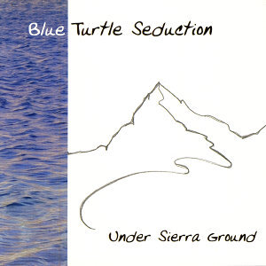 Blue Turtle Seduction 歌手頭像