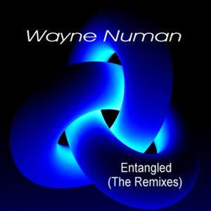 Wayne Numan 歌手頭像