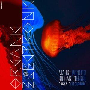 Mauro Picotto & Riccardo Ferri 歌手頭像