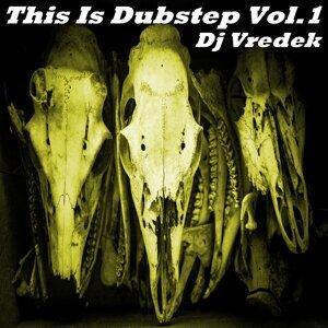 DJ Vredek 歌手頭像
