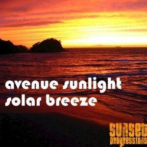 Avenue Sunlight 歌手頭像
