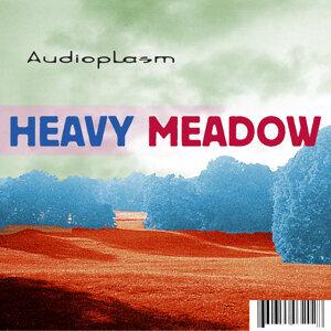 Audioplasm 歌手頭像
