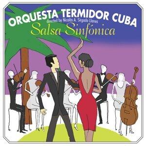 Orquesta Termidor 歌手頭像
