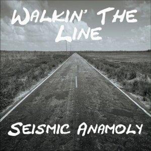 Seismic Anamoly 歌手頭像
