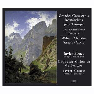 Javier Bonet - Orquesta Sinfónica de Burgos, dirección Javier Castro 歌手頭像