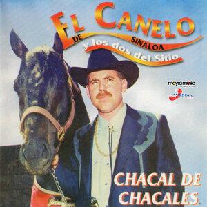 El Canelo De Sinaloa 歌手頭像