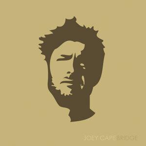 Joey Cape 歌手頭像