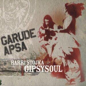 Harri Stojka Gipsy Soul 歌手頭像