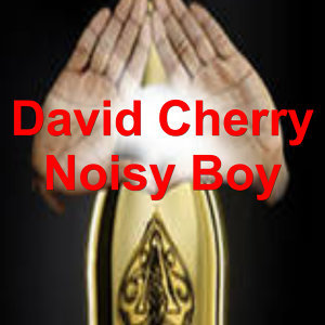 David Cherry 歌手頭像