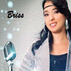 Briss 歌手頭像
