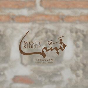 Mesut Kurtis 歌手頭像