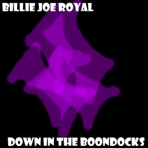 Billie Joe Royal 歌手頭像